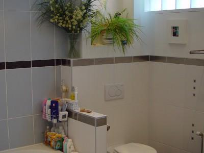 ecopropi bathroom remodeling 1