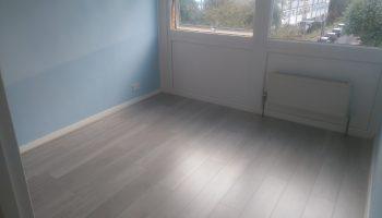 Laminate wood floor 3